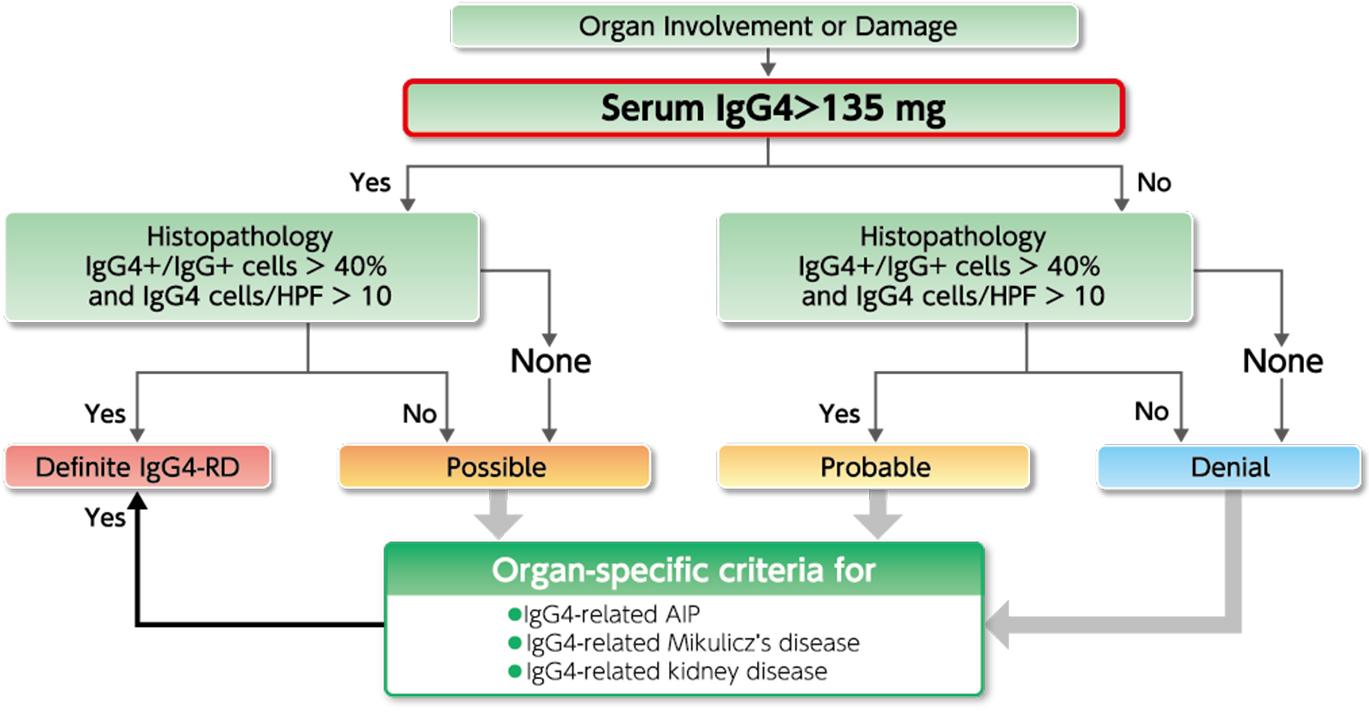 Nittobo Medical N-assay LA IgG4 Nittobo